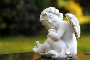座っている白い天使